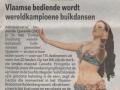 Het Nieuwsblad, 22/11/2011